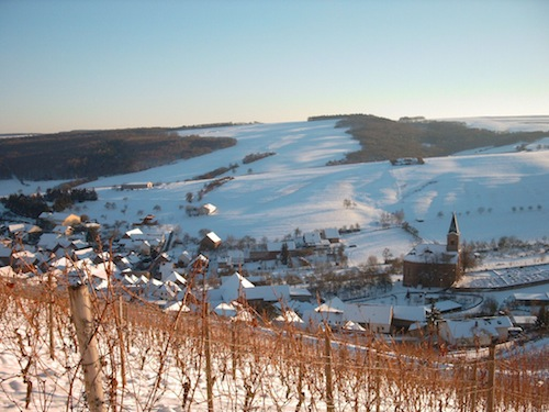 kirschroth im winter.jpg